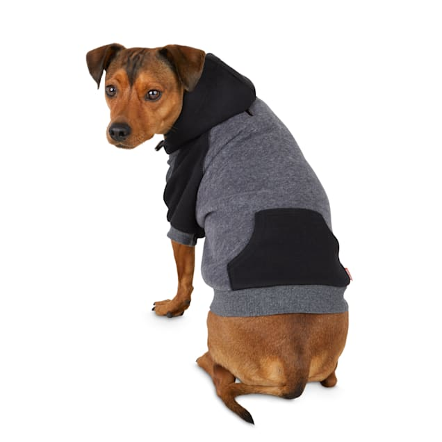 Reddy Black and Grey Color Block Dog Hoodie, Small - Carousel image #1