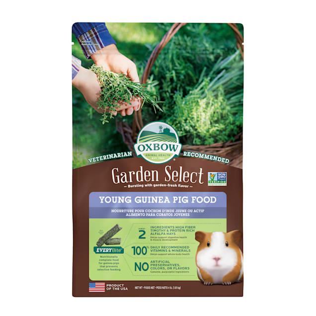 Oxbow Garden Select Young Guinea Pig Food, 4 lbs. - Carousel image #1