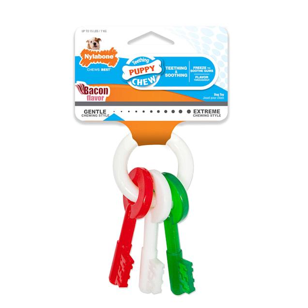 Nylabone Holiday Puppy Red Green White Teething Key Toys - Carousel image #1
