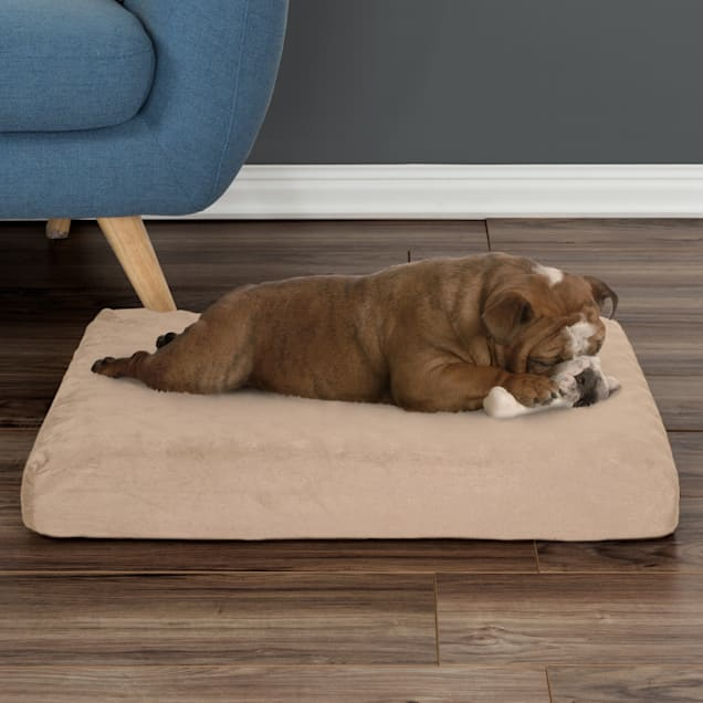 """PETMAKER Orthopedic Tan Pet Bed Egg Crate and Memory Foam with Washable Cover, 26"""" L X 19"""" W X 4"""" H - Carousel image #1"""