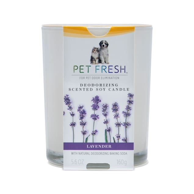 Arm & Hammer Pet Fresh Deodorizing Scented Soy Candle Lavender for Dogs and Cats, 5.6 fl. oz. - Carousel image #1