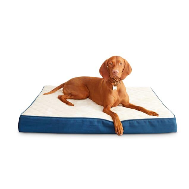 "Harmony Blue Orthopedic Lounger Dog Bed, 40"" L X 30"" W - Carousel image #1"