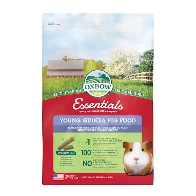 Oxbow Essentials Young Guinea Pig Food, 10 lbs. - Carousel image #1