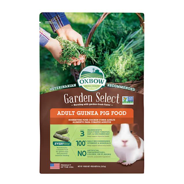 Oxbow Garden Select Adult Guinea Pig Food, 8 lbs. - Carousel image #1