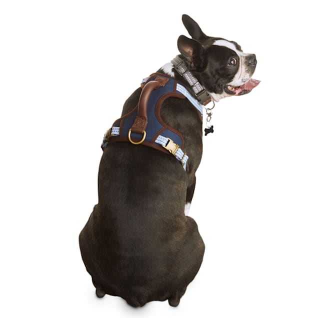 Reddy Indigo Utility Dog Harness, Medium - Carousel image #1