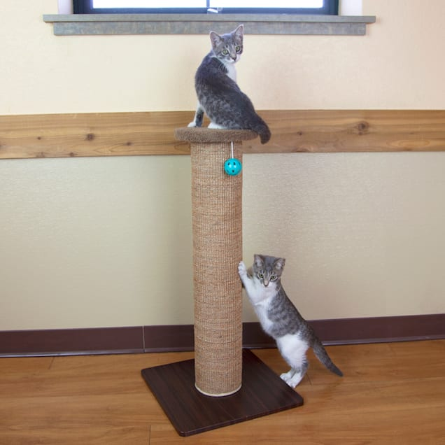 "Kitty City Scratch Perch for Cats, 32"" H - Carousel image #1"