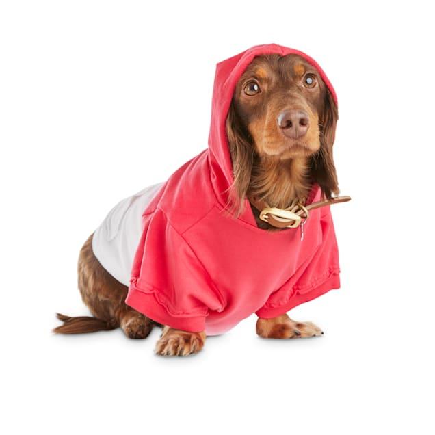 Bond & Co. Red Dip-Dye Dog Hoodie, X-Small - Carousel image #1