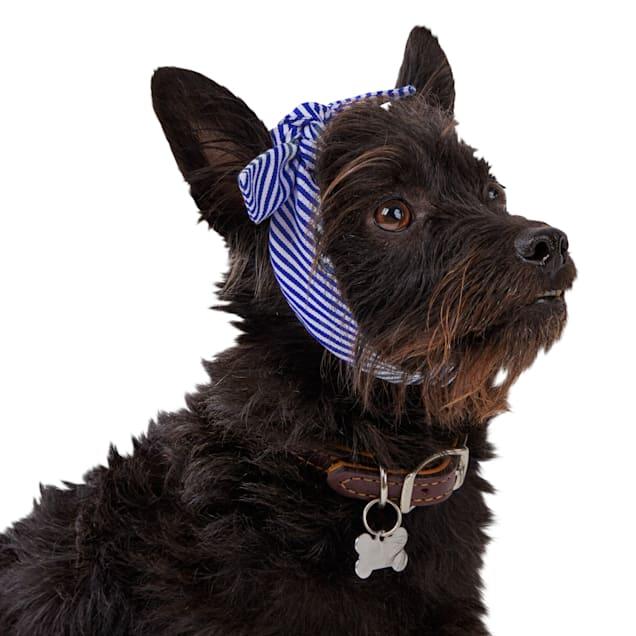 Bond & Co. Tie The Knot Nautical Dog Headband, X-Small/Small - Carousel image #1