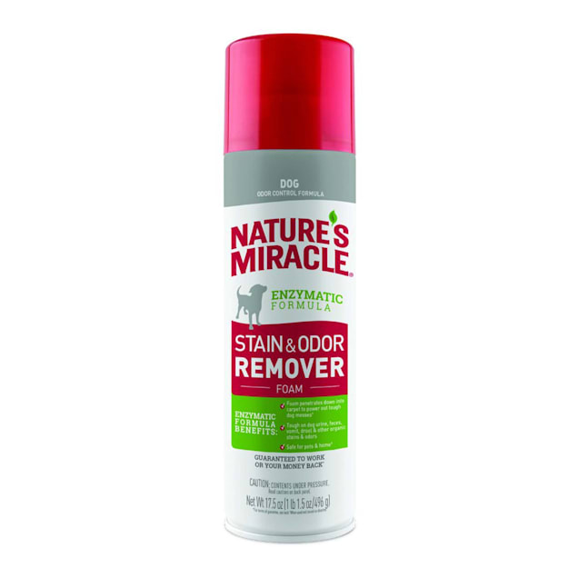 Nature's Miracle Dog Stain & Odor Remover Foam, 17.5 fl. oz. - Carousel image #1