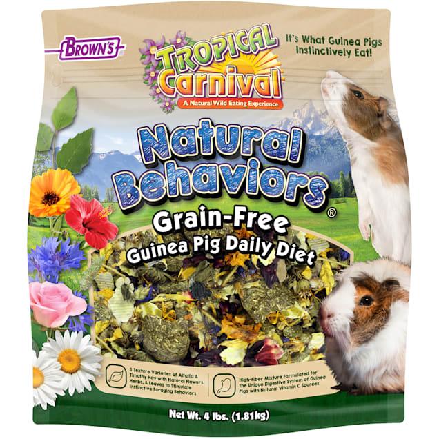 Brown's Tropical Carnival Natural Behaviors Grain-Free Guinea Pig Daily Diet Food, 4 lbs. - Carousel image #1