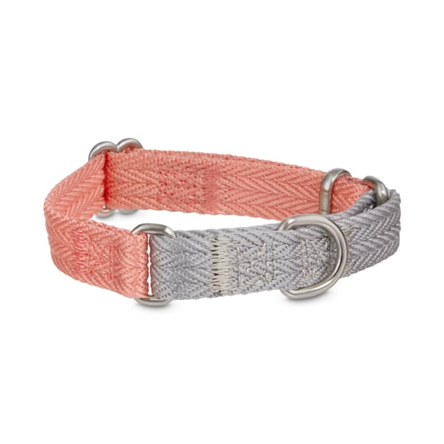 Good2Go Grey & Pink Two-Tone Martingale Dog Collar, X-Small - Carousel image #1
