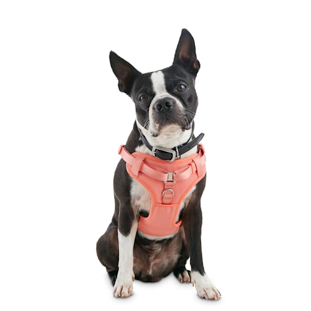 Good2Go Pink Padded Step-In Dog Harness, X-Small - Carousel image #1