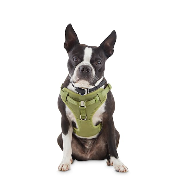 Good2Go Olive Padded Step-In Dog Harness, X-Small - Carousel image #1
