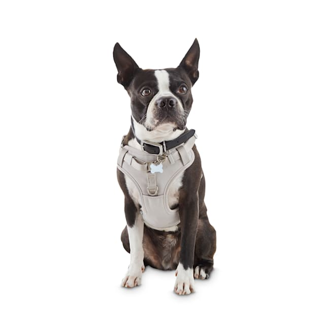 Good2Go Grey Padded Step-In Dog Harness, X-Small - Carousel image #1