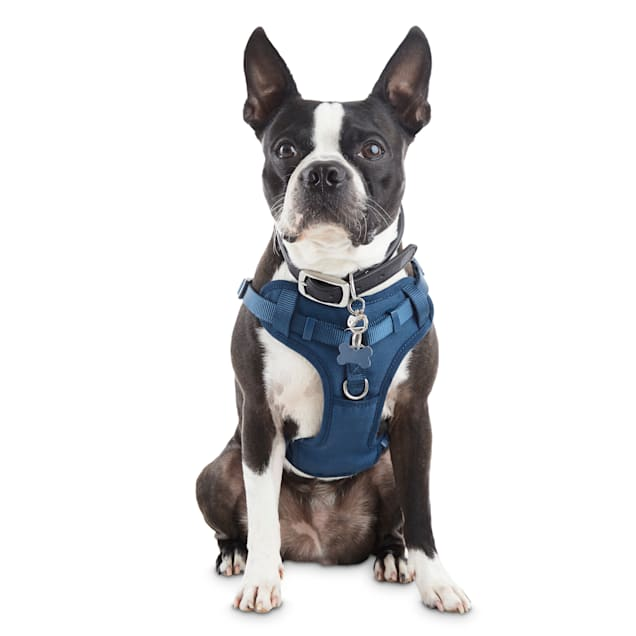 Good2Go Navy Padded Step-In Dog Harness, X-Small - Carousel image #1