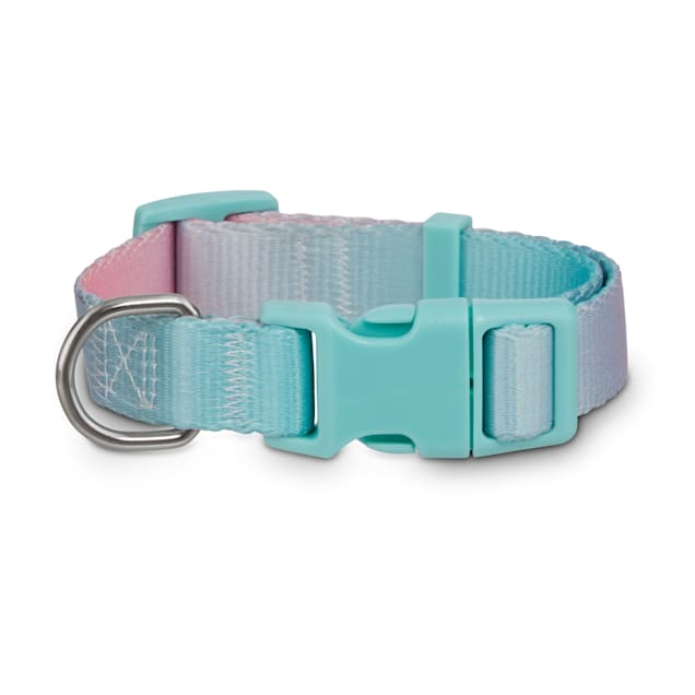Good2Go Teal Ombre Dog Collar, Small - Carousel image #1