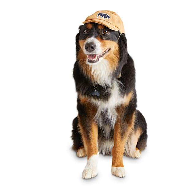 Reddy Tan Snapback Dog Hat, Large/X-Large - Carousel image #1