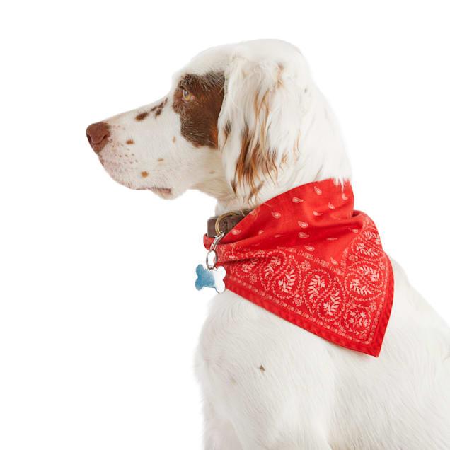 Reddy Red Paisley Reversible Dog Bandana, X-Small/Small - Carousel image #1