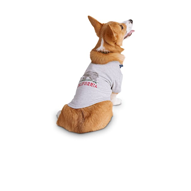 Reddy California Dog Graphic T-Shirt, X-Small - Carousel image #1