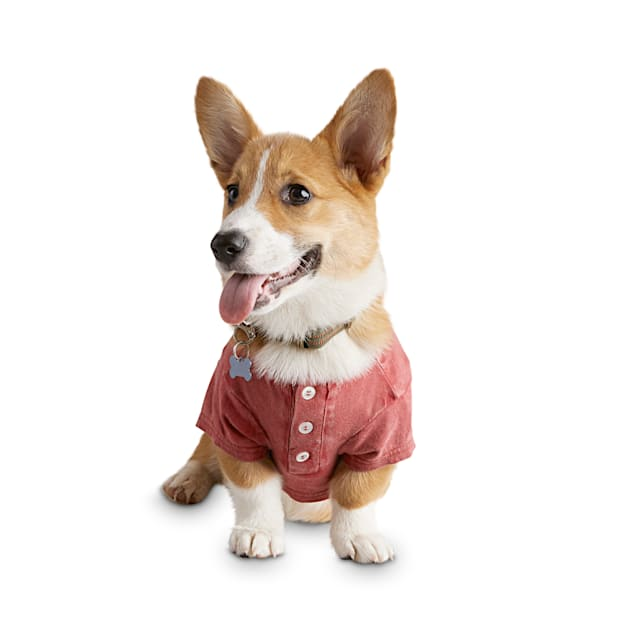 Reddy Washed Red Dog Henley, X-Small - Carousel image #1