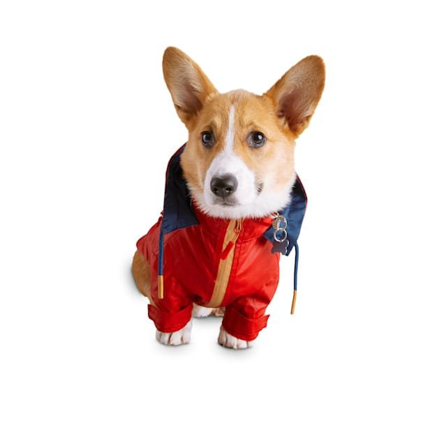 Reddy Red Coated-Canvas Dog Raincoat, X-Small - Carousel image #1