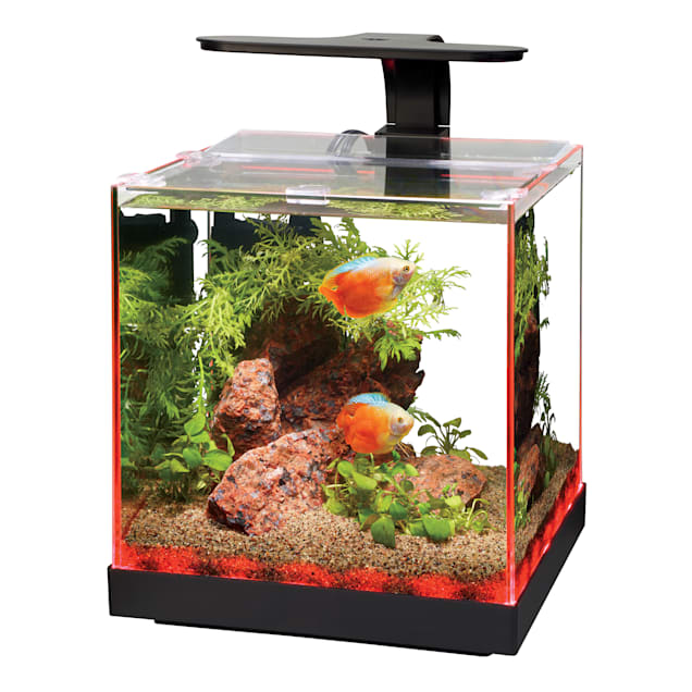 Aqueon Edgelit Cube Glass Aquarium, 3 Gallon - Carousel image #1