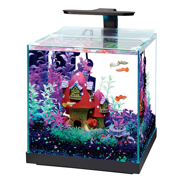 Aqueon Edgelit Cube Glass Aquarium, 6 Gallon - Carousel image #1