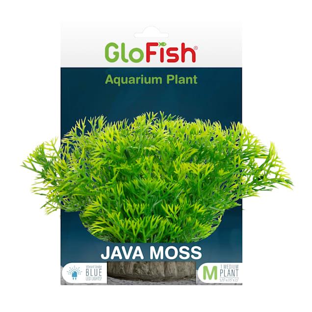 GloFish Java Moss Green Plant Fluorescent Under Blue LED Light Aquarium Decor, Medium - Carousel image #1
