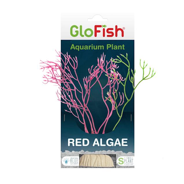 GloFish Red Algae Plant Fluorescent Under Blue LED Light Aquarium Decor, Medium - Carousel image #1