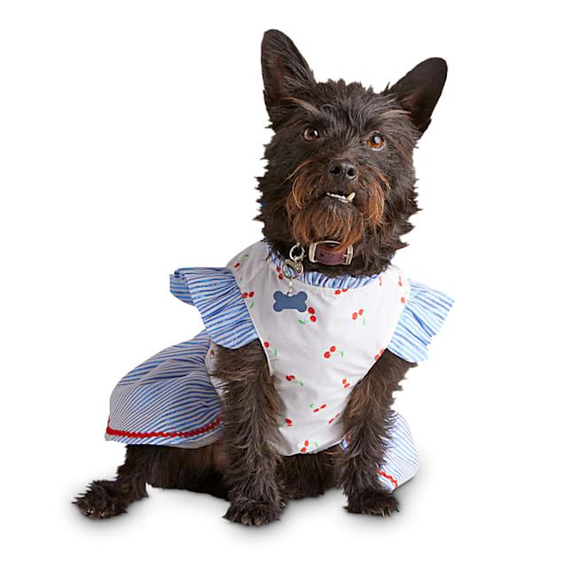 Bond & Co. Cherry Cute Dog Dress, X-Small - Carousel image #1