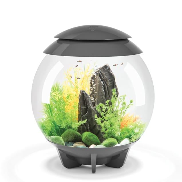 "biOrb Halo Grey 8 Gallon Aquarium With Micro Light, 15.75"" L X 15.75"" W X 18"" H - Carousel image #1"