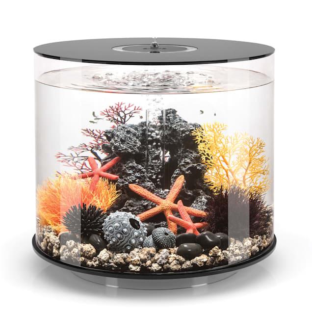 "biOrb Tube Black Aquarium With Micro Light, 9 Gallon, 16"" L X 16"" W X 14.5"" H - Carousel image #1"