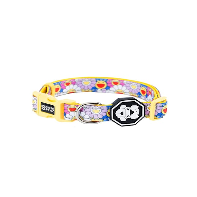 Fresh Pawz The Psychedelic Flowers Dog Collar, Small - Carousel image #1