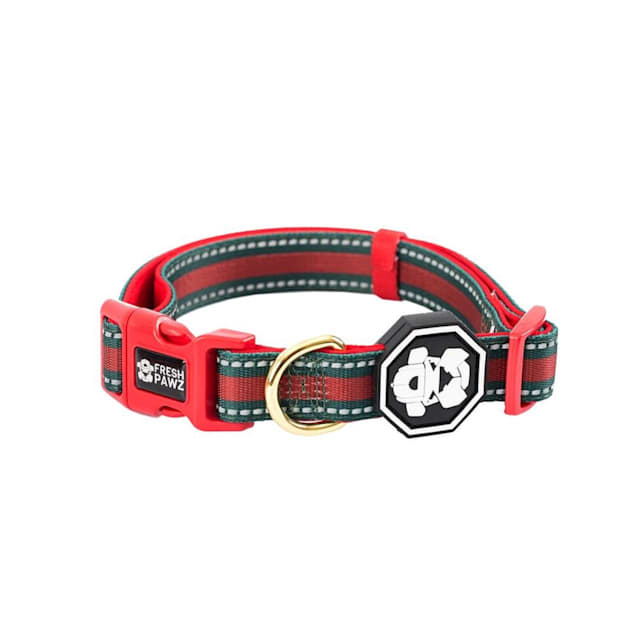 Fresh Pawz The G-Stripe Dog Collar, Small - Carousel image #1