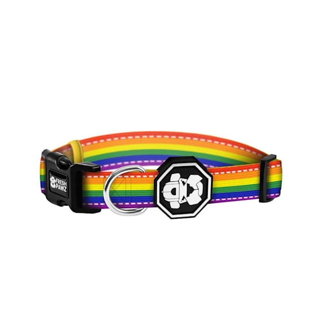 Fresh Pawz The Pride Rainbow Flag Dog Collar, Small - Carousel image #1
