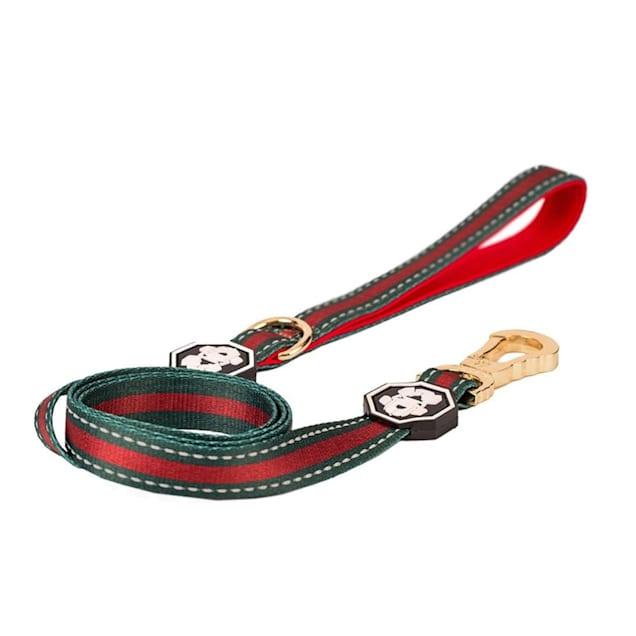 Fresh Pawz The G-Stripe Dog Leash, Small - Carousel image #1