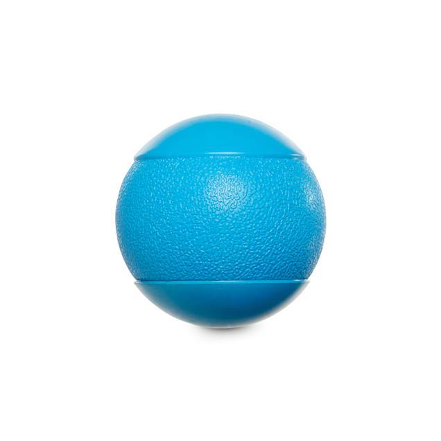 Leaps & Bounds Squeak Ball Dog Toy, Medium - Carousel image #1