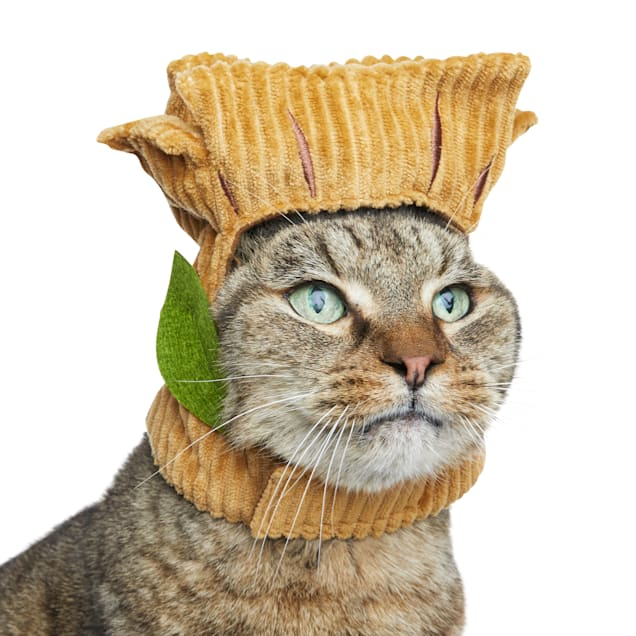 Bootique Marvel Groot Cat Costume - Carousel image #1