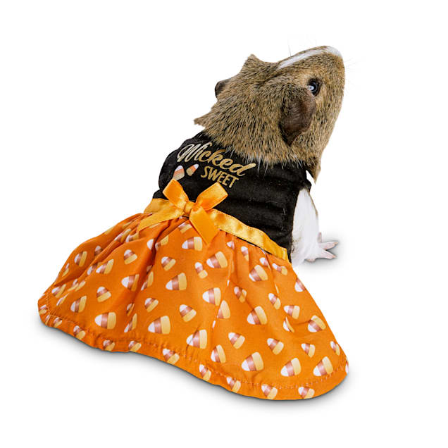 Bootique Wildly Wicked Small Animal Costume - Carousel image #1