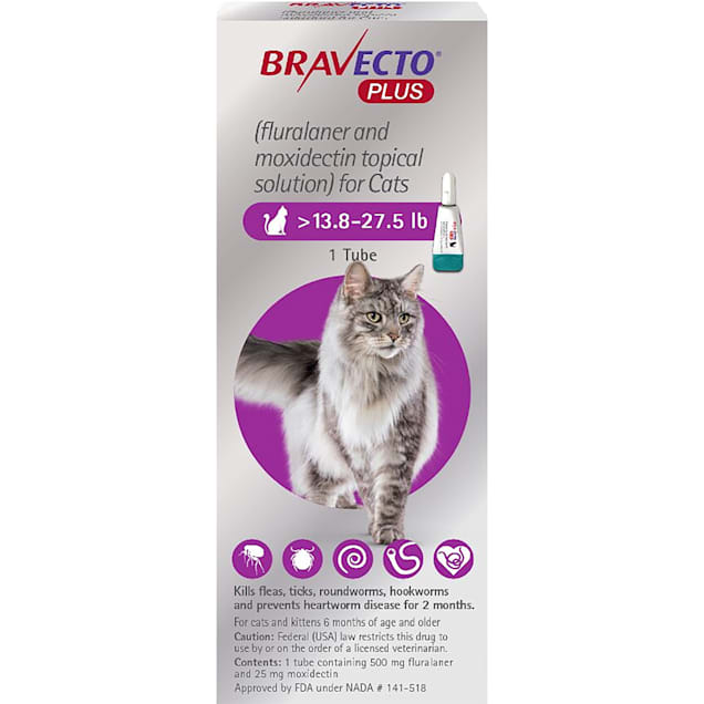 Bravecto Plus Topical Solution for Cats Greater Than 13.8-27.5 lbs, 2 Month Supply - Carousel image #1