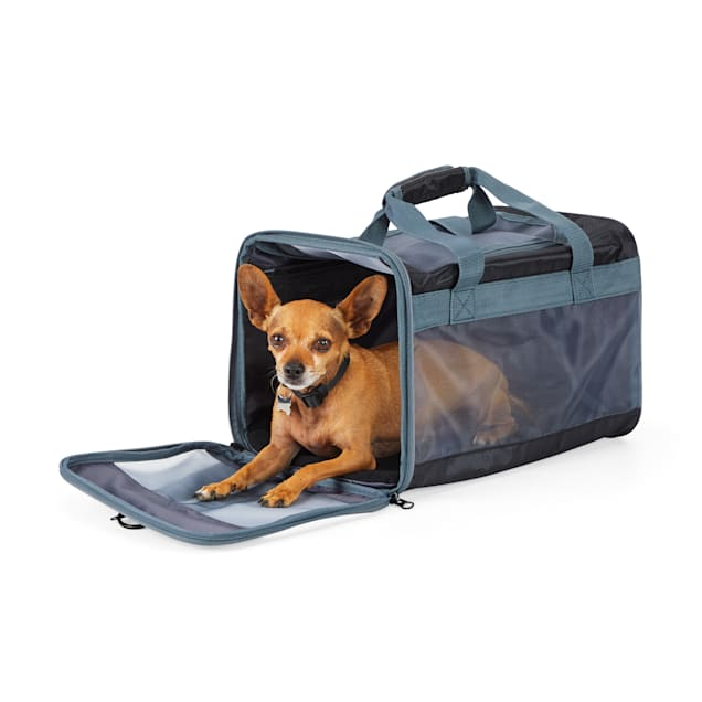 EveryYay Places To Go Black Pet Carrier, Small - Carousel image #1