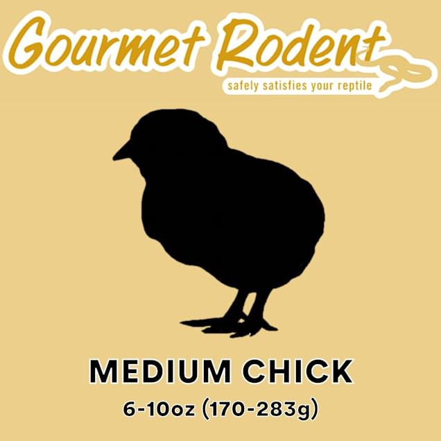 Frozen Medium Chick - 5 Count - Carousel image #1