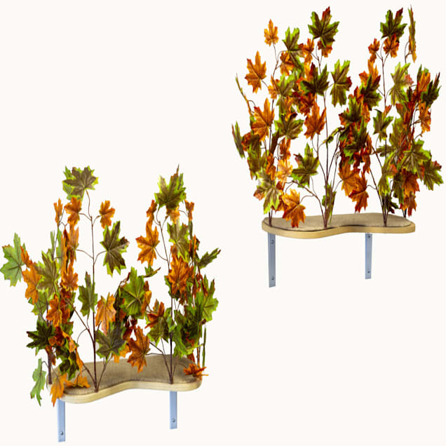 """On2Pets Summer Curved Cat Canopy Shelves, 16"""" H, Set of 2 - Carousel image #1"""