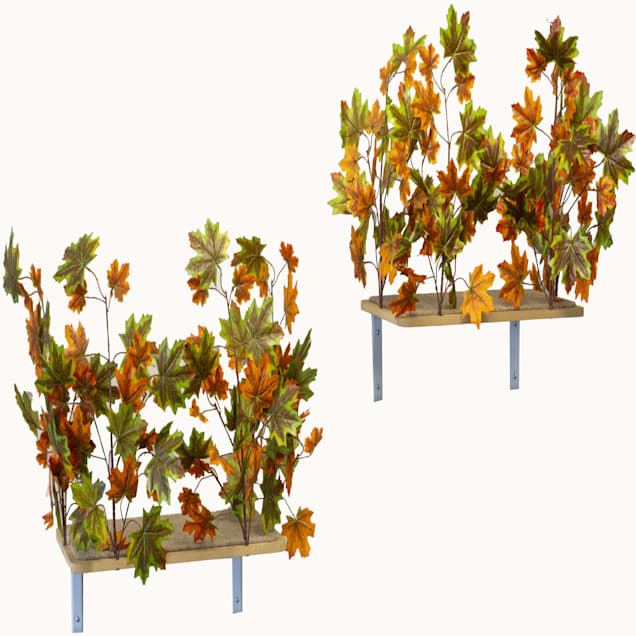 """On2Pets Summer Rectangle Cat Canopy Shelves, 16"""" H - Carousel image #1"""
