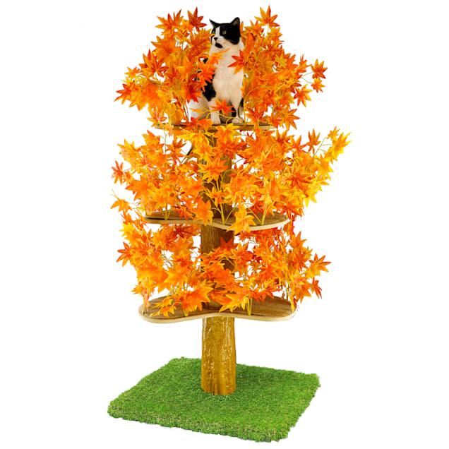 """On2Pets Fall Square Cat Tree, 60"""" H - Carousel image #1"""
