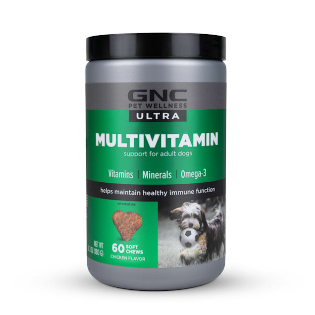 GNC Ultra Multivitamin Chicken Flavor Soft Chews for Dogs, Count of 60 - Carousel image #1