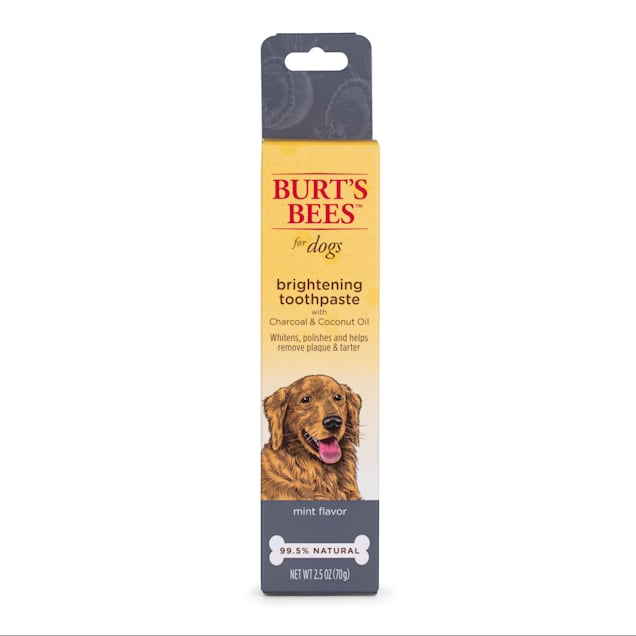 Burt's Bees Care Plus+ Charcoal & Coconut Oil Brightening Toothpaste for Dogs, 0.3 lb. - Carousel image #1