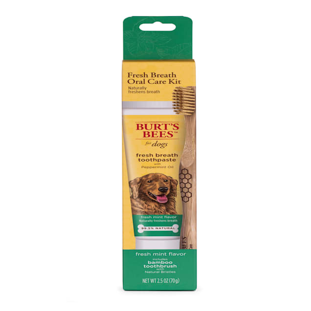 Burt's Bees Care Plus+ Fresh Breath Toothpaste with Peppermint Oil & Bamboo Toothbrush for Dogs, 0.33 lb. - Carousel image #1