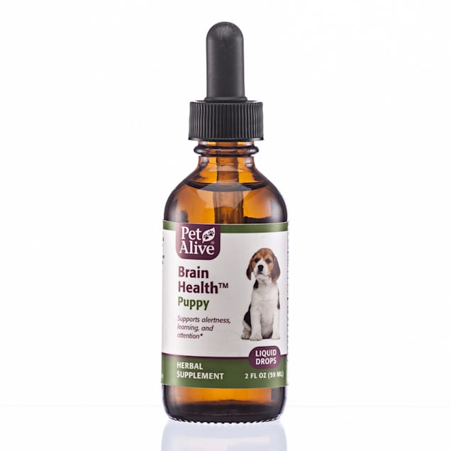 PetAlive Brain Liquid Drops Natural Herbal Brain Health Supplement for Growing Puppies, 2 fl. oz. - Carousel image #1