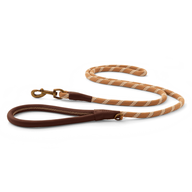 Reddy Tan Rope Dog Leash, 6 ft. - Carousel image #1